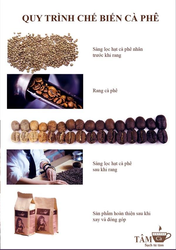 Quy trình cơ bản trong sản xuất cà phê rang xay nguyên chất Tâm Cà