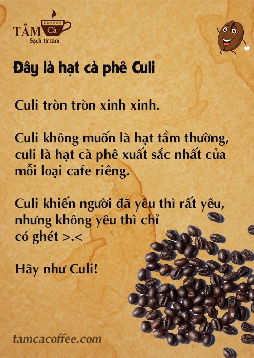 Be like bill - Hạt cà phê culi