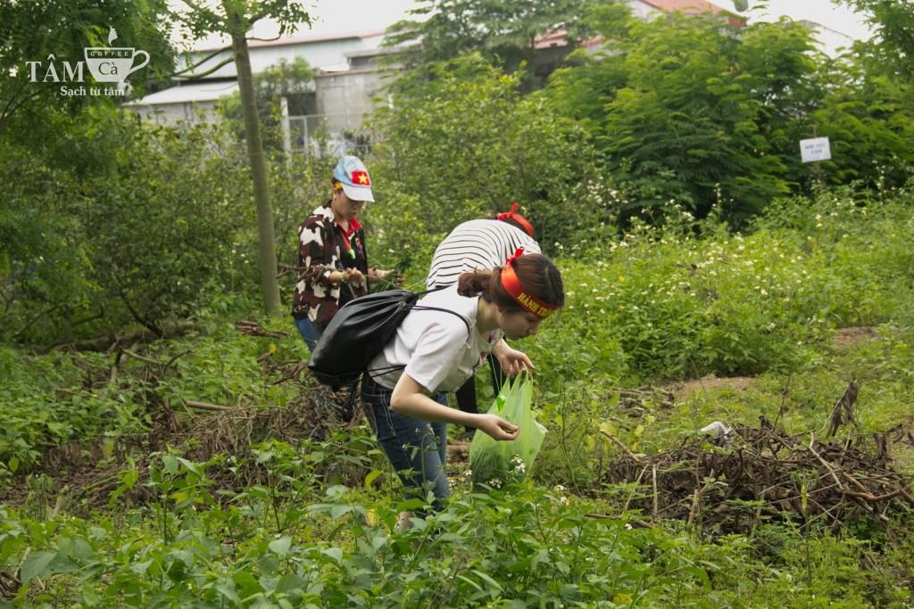 Trong khi các thành viên nam ở lại hoàn tất việc dựng trại thì các cô gái bắt đầu đi kiếm nguyên liệu cho bữa ăn trưa. Không gì khác ngoài... rau dại.